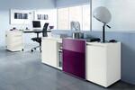 Modell Select: stylisch mordern und funktionell passt sich dieser Schrank in Ihr Büro ein.